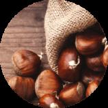 ingredient-marron