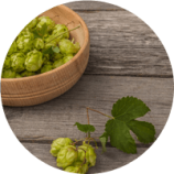 ingredient_houblon